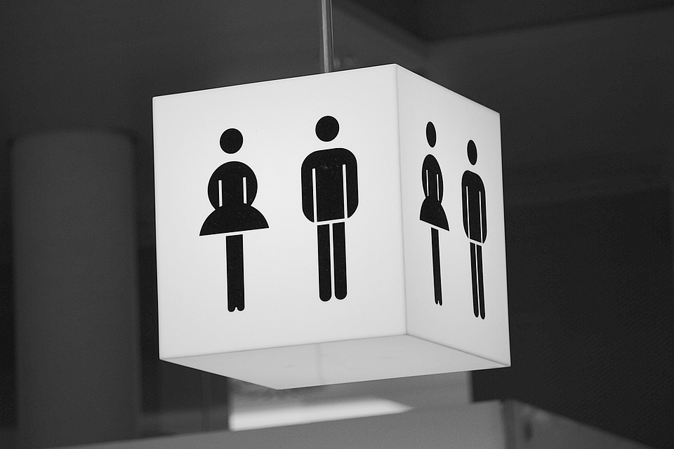 "Science : ""se faire chier"" ne donne pas plus envie d'aller aux toilettes"