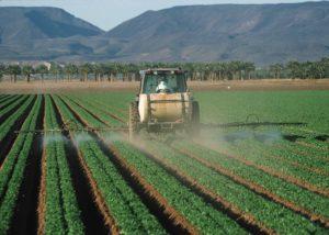De nombreux produits chimiques (engrais, pesticides) sont utilisés dans l'agriculture