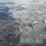 Plastique flottant dans la mer
