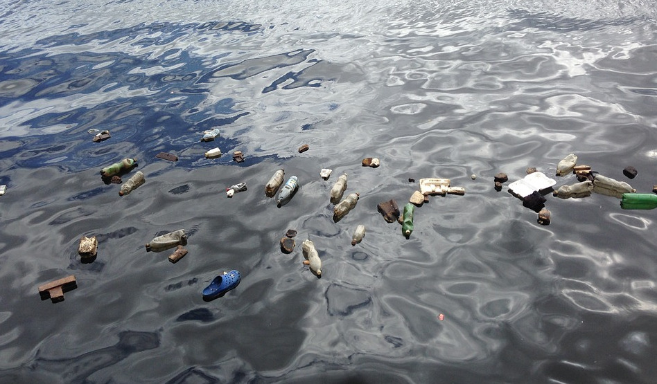 À cause de la pollution plastique des océans, l'OMS interdit les poissons d'avril cette année