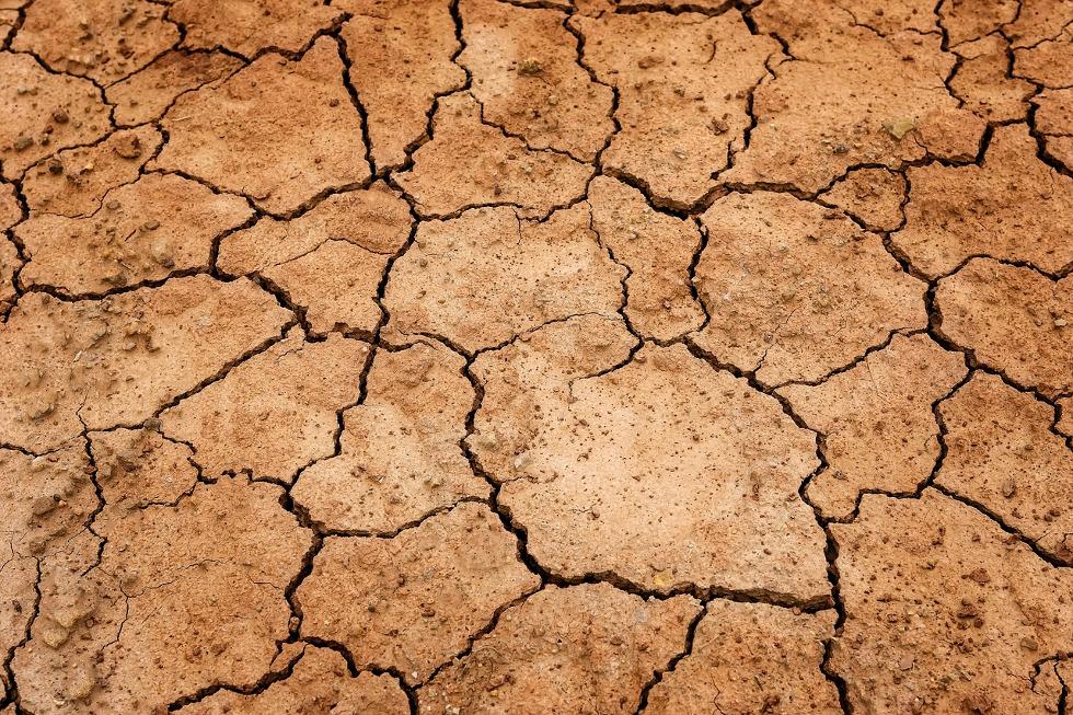 Le Giec vient de publier un nouveau rapport sur les terres agricoles et la sécurité alimentaire