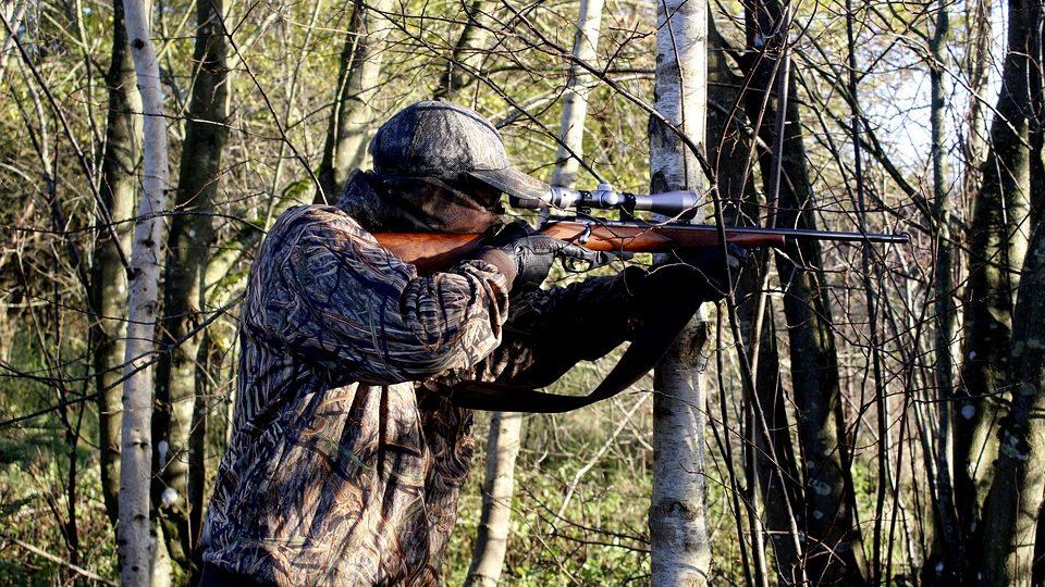Ouverture de la chasse : Le gouvernement déconseille aux élus d'aller se balader en forêt
