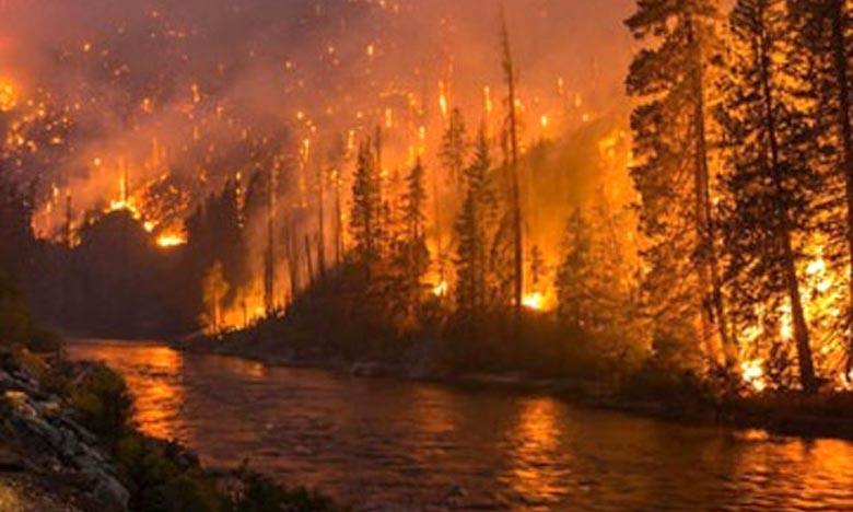 L'Iran demande à sa diaspora d'allumer des feux de forêts un peu de partout aux États-Unis